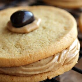 Close up view of a sugar cookie sandwich with brown frosting and topped with a chocolate covered espresso bean.