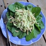 Overhead view of blue plate with chicken salad on bed of spinach.