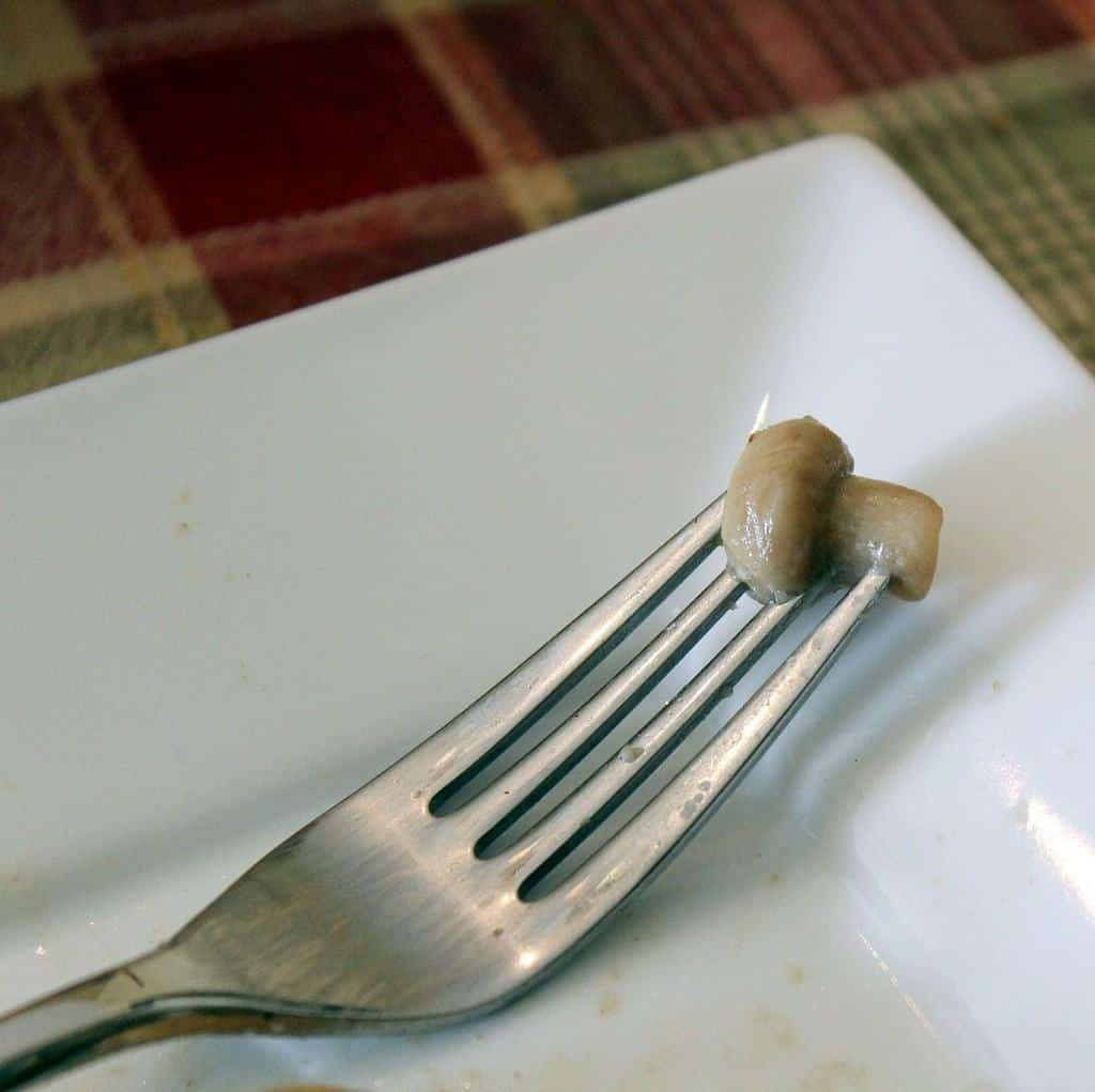 Close-up of fork with very small cooked mushroom on tines, on square white plate.