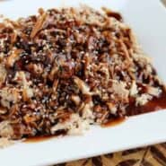 Partial image of shredded pork on white platter, garnished with sesame seeds.
