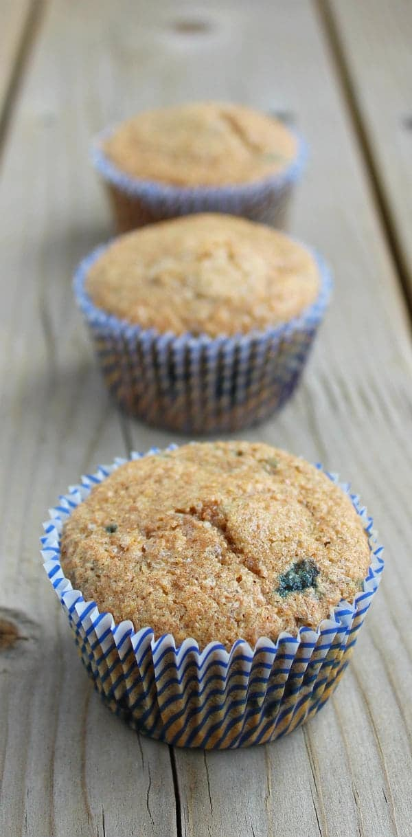 bluberry-wheat-bran-muffins-2