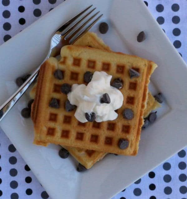 Overhead view of waffles on plate. Polka dot background.