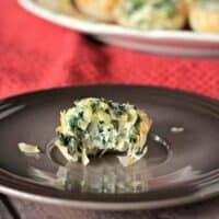 Easy Spinach Artichoke Phyllo Bites