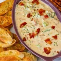 Broccoli and Bacon Beer Cheese Dip