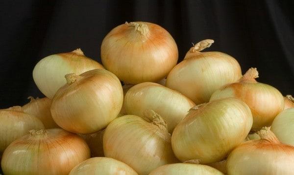 Kale And Onion Pie Recipes — Dishmaps