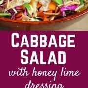 Easy Cabbage Salad using Rotisserie Chicken | RachelCooks.com