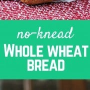 This no-knead whole wheat bread recipe could not be easier! Great for the beginner baker. Get the easy recipe on RachelCooks.com!