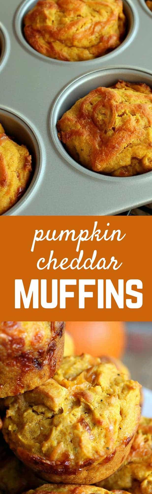 These pumpkin cheddar muffins are unique, surprising, and extremely delicious. They'll be a new fall favorite for breakfast or brunch. Get the recipe on RachelCooks.com.