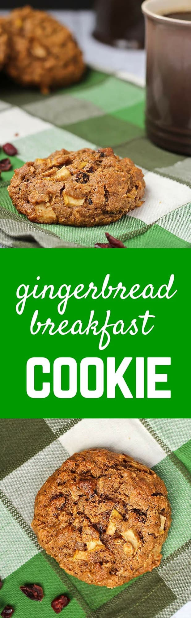 Thisflavorful gingerbread breakfast cookie recipe yields a filling, delicious, and healthy way to start the day. They have some fun ingredients to keep you satisfied! Get the easy recipe on RachelCooks.com!