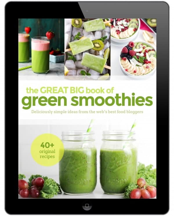 2016-02 Ipad Cover Smoothie