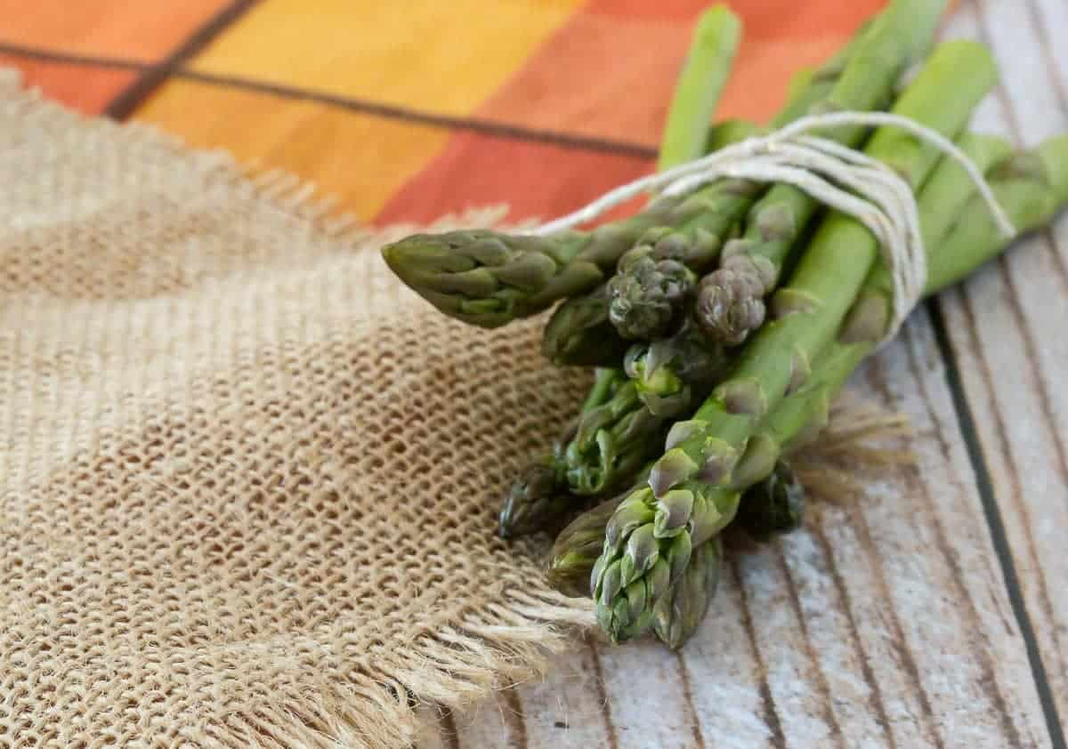 fresh asparagus bundled with a ribbon