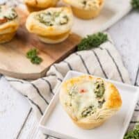 Kale and Spinach Dip Bites