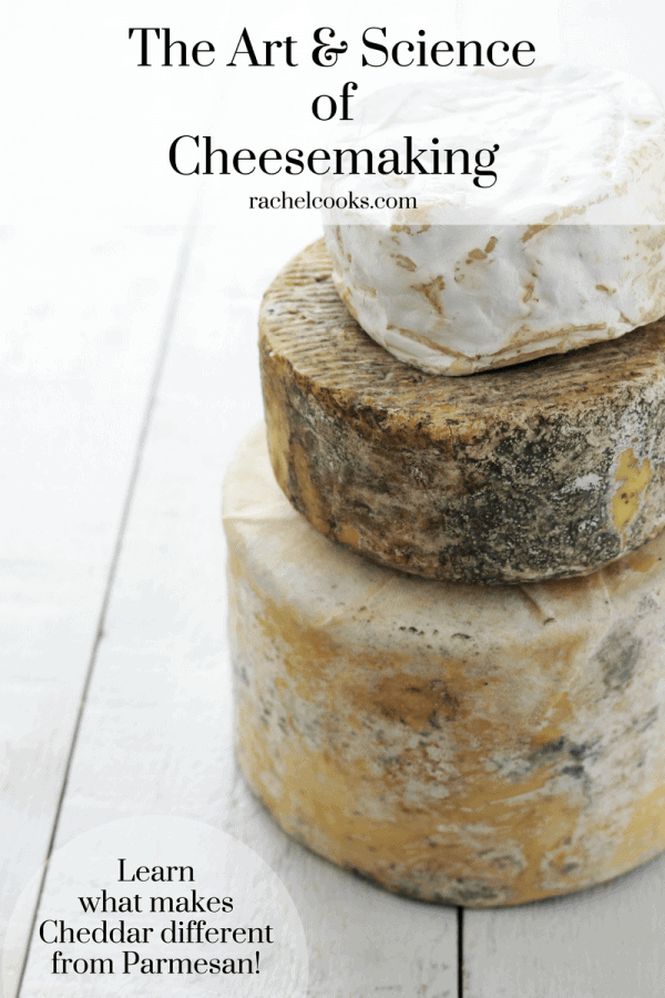 "Three large wheels of cheese stacked up on a white wooden background. Text overlays read: ""The Art and Sciencce of Cheesemaking, rachelcooks.com, Learn what makes cheddar different from Parmesan!"""
