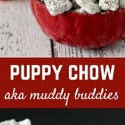 This puppy chow recipe is one that will quickly become a favorite -- and there's a (small) fun twist to make it even better! Get the muddy buddy recipe on RachelCooks.com!
