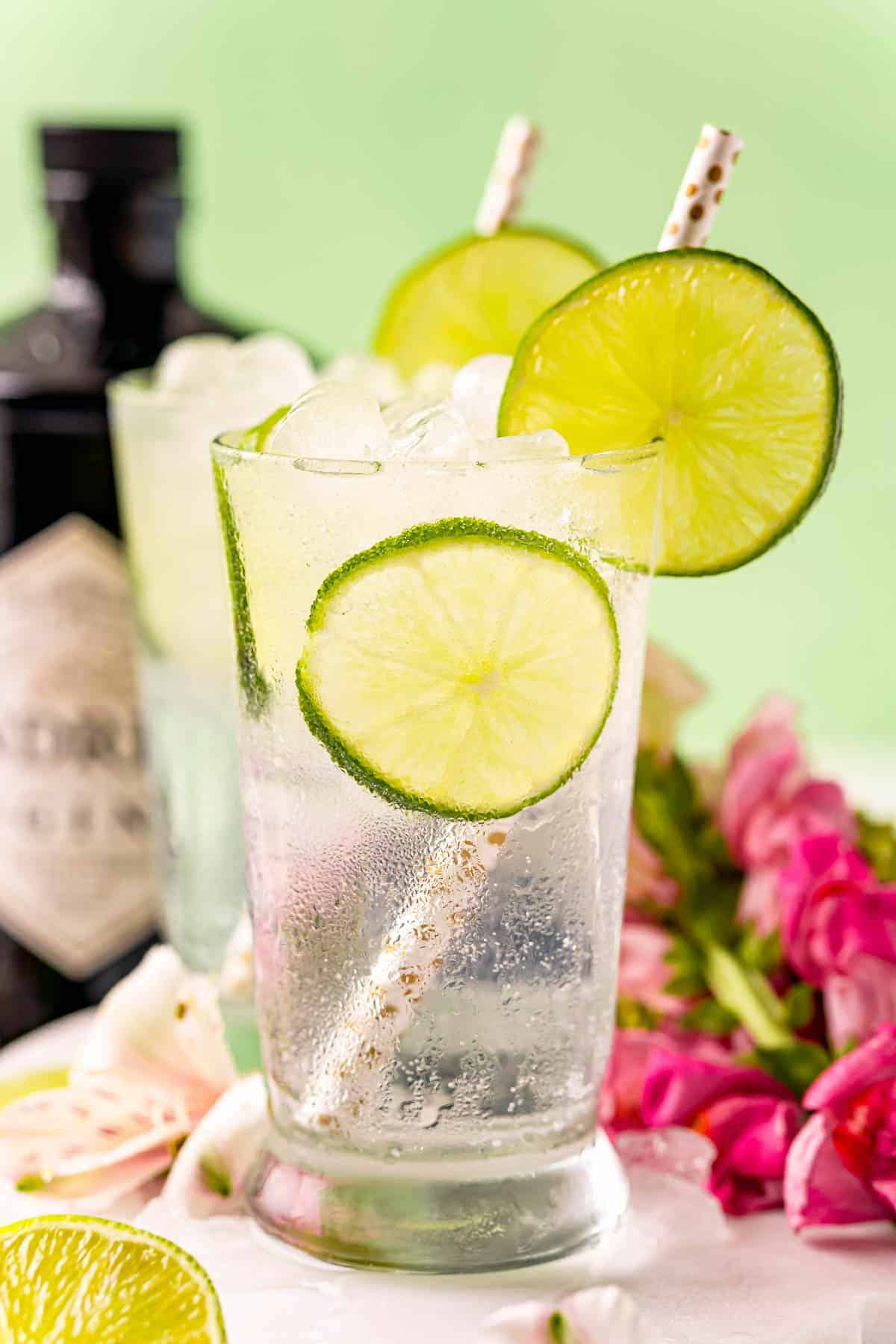 Gin and Tonic in a clear glass with lime slices, another glass in the background, and a bottle of gin.