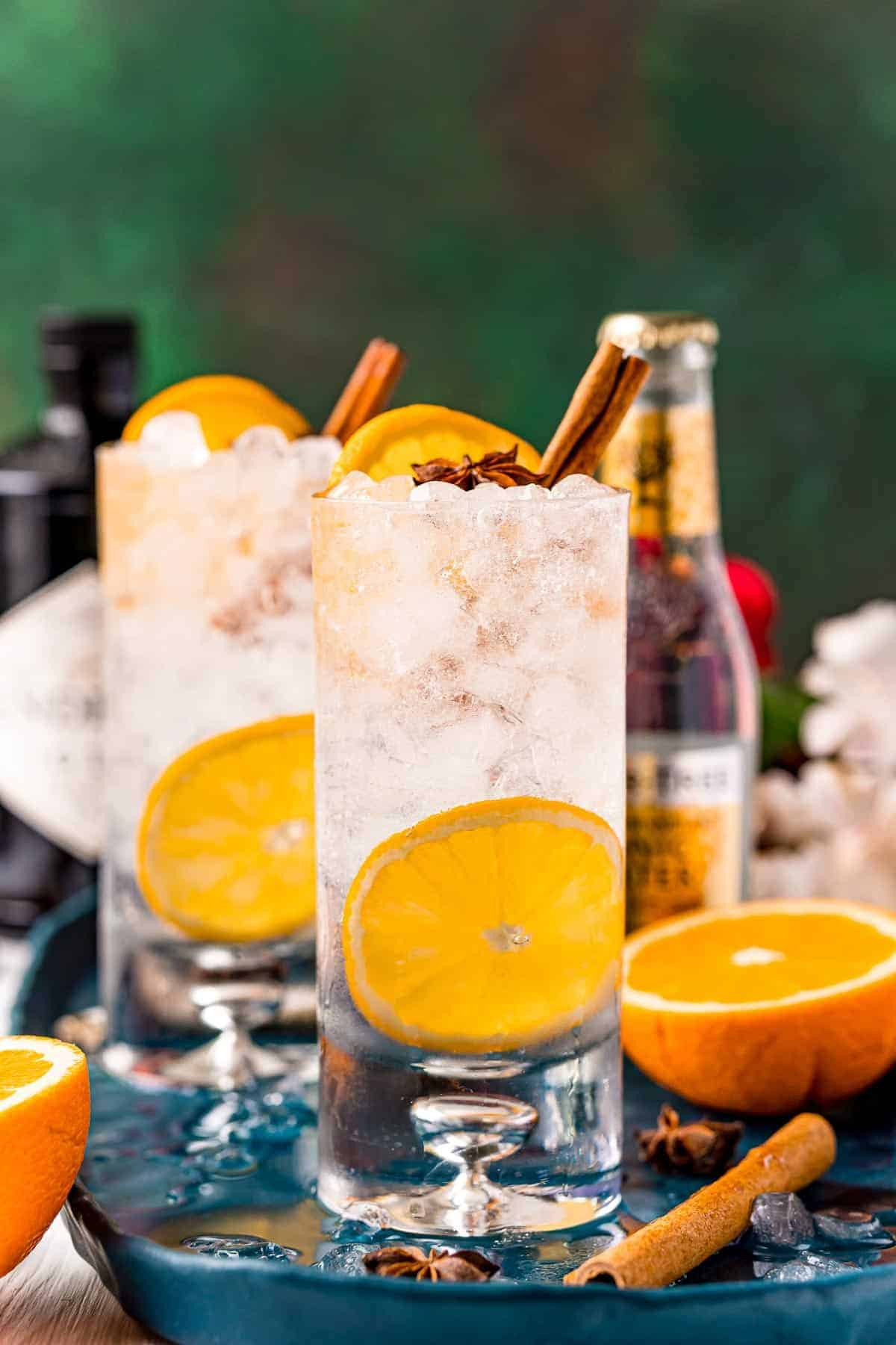 Straight-on view of two highball glasses filled with nugget ice, orange slices, cinnamon stick, star anise, gin and indian tonic water.