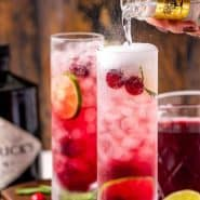 """Two bright red drinks, text overlay reads """"cranberry gin & tonic, rachelcooks.com"""""""