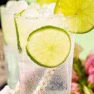 """A clear drink with lime slices and a straw. Text overlay reads """"classic gin & tonic"""""""