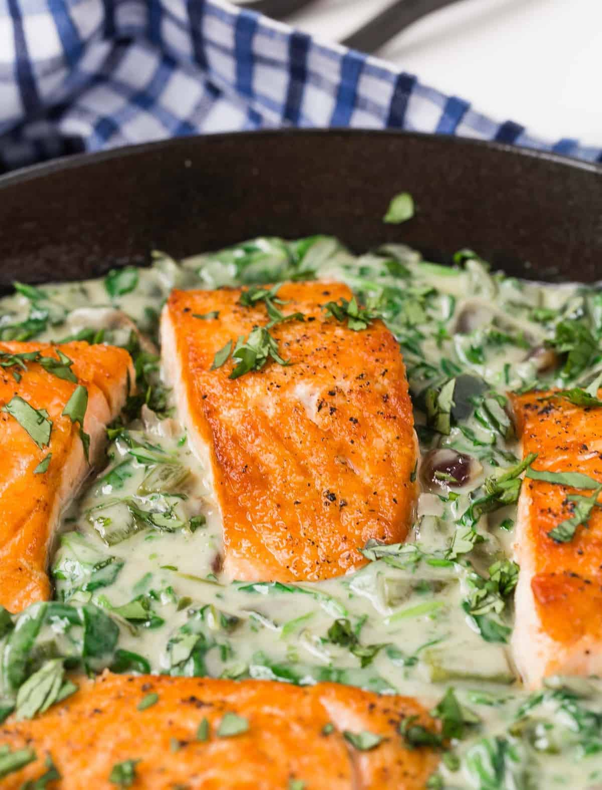 Four fillets of salmon in a green and white sauce.