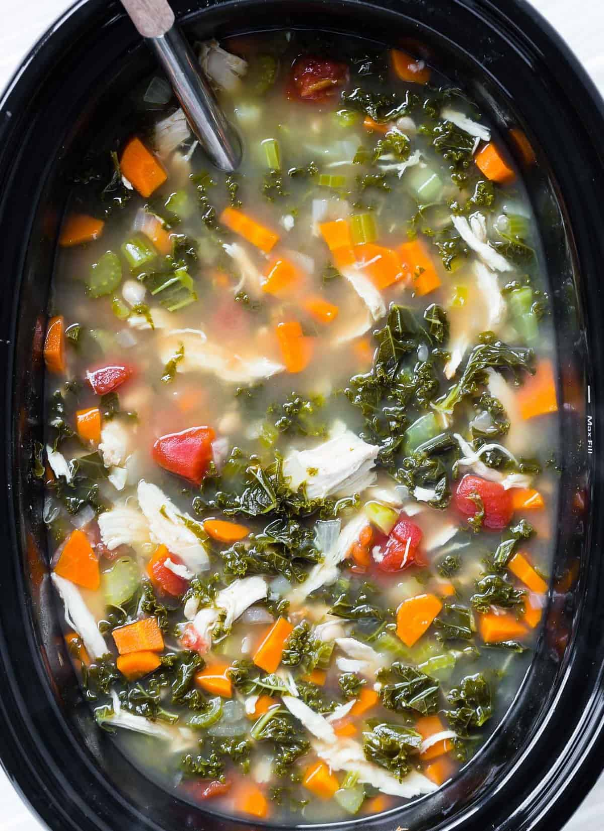 Healthy soup in a slow cooker with a ladle.