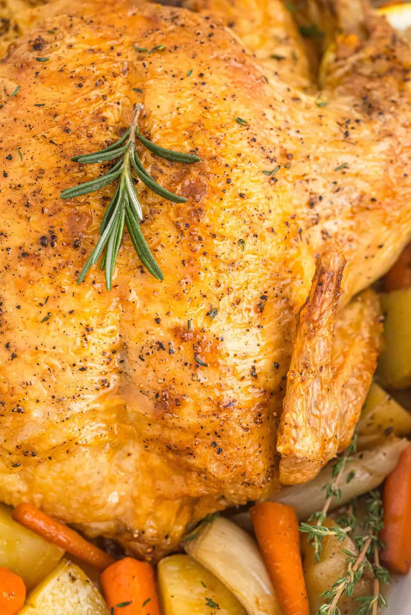 Super close up view of roasted chicken, vegetables, and potatoes.