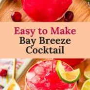"""Bright red drink, text overlay reads """"easy to make bay breeze cocktail."""""""