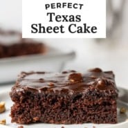 """Chocolate cake on a white plate, text overlay reads """"perfect texas sheet cake."""""""