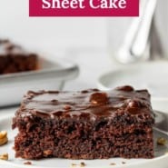 """Chocolate cake on a white plate, text overlay reads """"delicious texas sheet cake."""""""